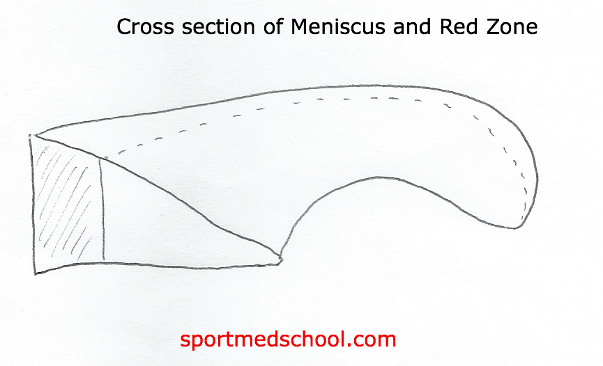 mcmurray test for knee